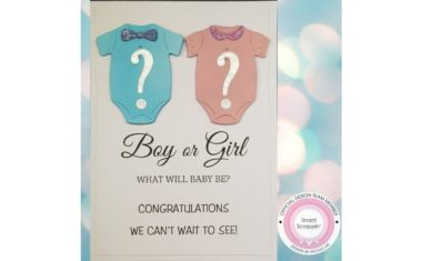 Gender Reveal by Nicole Lye